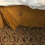Room 214 carpet stains