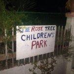 The Rose Tree Foto
