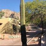 Photo de Hilton Tucson El Conquistador Golf & Tennis Resort