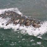 Ilha dos Lobos na cidade de Torres RS