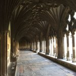 Cathedral cloister early in morning_2