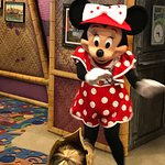 Minnie - Character Dining - Paradise Pier