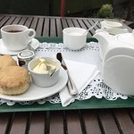 Best in town: Warm scones with clotted cream + tea