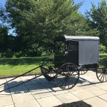 Authentic Amish Buggy