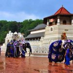 ####Kandy Esala Perahera 2017 will begin on## ####Saturday, July 29###and ends on###Tuesday, Aug