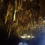 Foto de Bahia Divers