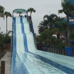 Photo de Knott's Soak City U.S.A.