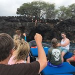Kona pilot whales and cliff jumpers, oh my!