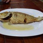 Tasty fish!