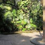 Photo of Garden of the Maidens (Sahelion Ki Bari)