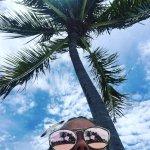 So many Palm Trees!