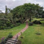 Foto de Hotel Bougainvillea
