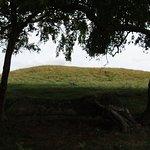Foto de Sutton Hoo