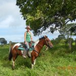 Horse back riding tour in the mountains .... adventure and fun