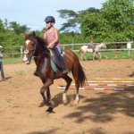 Kids horse back riding school