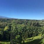 صورة فوتوغرافية لـ Maui Tradewinds