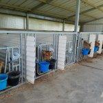 Lapp Valley Farm