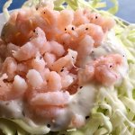 Cabbage salad with baby shrimp