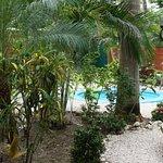 Foto de Hostel El Cactus