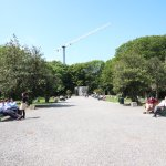 Iveagh Gardens Photo