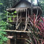 Photo of Bamboo Hideaway