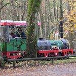 Adler Bahn im Tiergarten Nürnberg