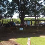 Picnic benches between the bar and the kids play area