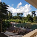 Pool view room also with jungle and mountain views