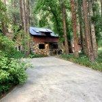 Mimic cabin (#19)