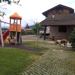 Photo of Agriturismo Golden Pause