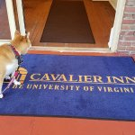 Cavalier Inn at the University of Virginia Foto
