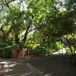les jardins entre les différents espaces (réception, chambres, piscine, restaurant°