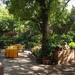espace petits déjeuner/repas au jardin