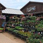 Photo of Wildseed Farms