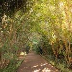 Foto de Vivaz Cataratas Hotel & Aquaparque Resort