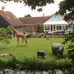 Quirky garden by the canal