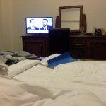 Photo of Hotel Coandi