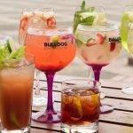 Muy Buenas Bebidas !   Good Drinks