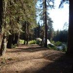 Stony Creek Campground Foto