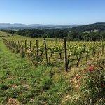 Photo de Youngberg Hill Vineyards & Inn