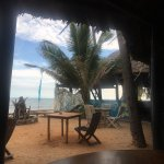 Photo of Pogo Beach Bar & Grill