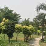 These photos are of the resort or the vicinity like nature trail and road leading to the resort.