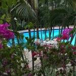 Beautiful, restful pool area at uns hotel