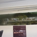 Photo of Ocean 82