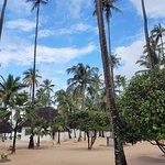 Foto di Diamonds Mapenzi Beach