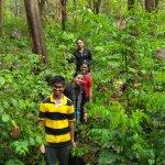 Dense forest on the trek