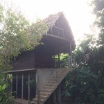 Foto de Martz Farm Treehouses and Cabanas Ltd.
