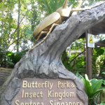 Entrance of Butterfly Park & Insect Kingdom