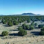 Foto de Twin Arrows Navajo Casino Resort