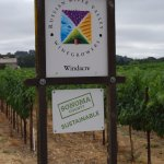 Russian River Valley, Sonoma County Sustainable